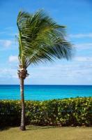 Nieudany wyjazd na wakacje
